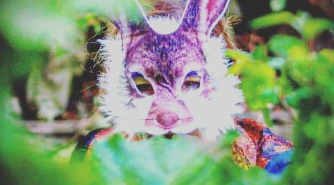 SERA: 'Rabbit Hole.'